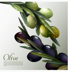 Abstract olive branches poster vector