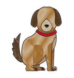 cartoon sitting dog with collar pet family vector image
