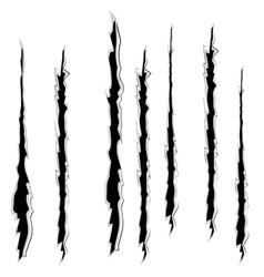 Grunge cat scratches9 vector