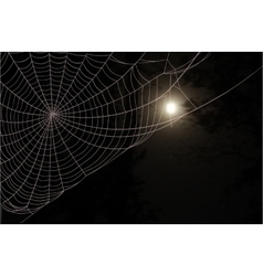 Web moon forest vector