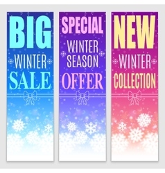 Winter Sale Banners vector image