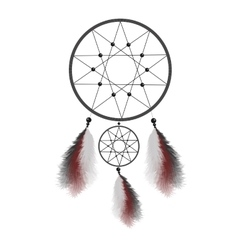 Dreamcatcher with feathers Native American Indian vector image