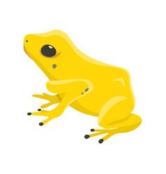 poison dartfrog phyllobates terribilis a dangerous vector image