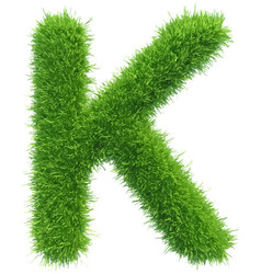 Capital letter k from grass on white vector