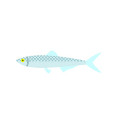 herring fish isolated icon vector image