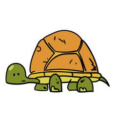 turtle hand drawn cartoon vector image