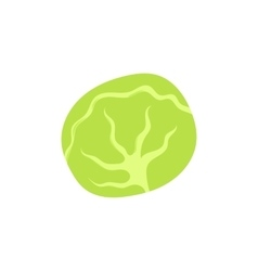 Cabbage icon cartoon style vector image vector image