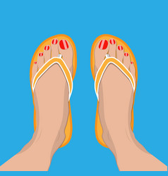 Female feet with red pedicure in summer flip-flops vector