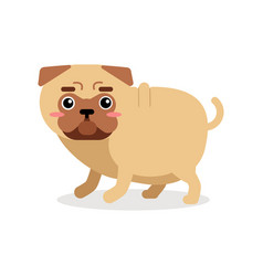 Funny cartoon pug dog character vector