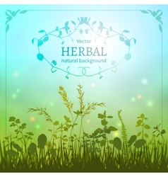 Delicate herbal background vector