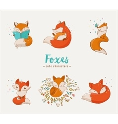 Fox characters cute lovely vector image