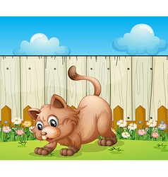 A cat playing at the backyard vector