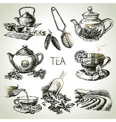 Hand drawn sketch tea set vector image