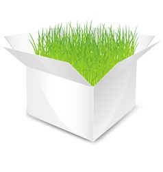 White box with green grass isolated vector