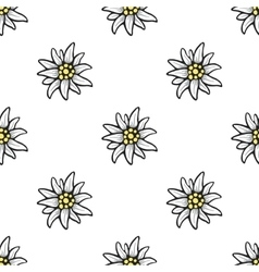 Edelweiss flower seamless pattern background vector