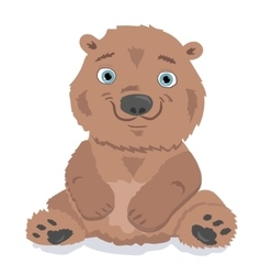 Little bear isolated on white vector