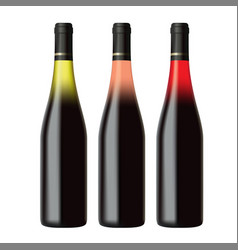 set of white rose and red wine bottles vector image