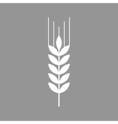 Wheat flat icon vector