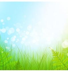Green grass meadow vector