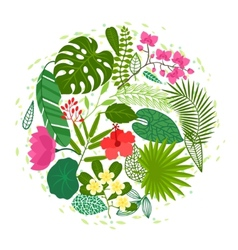 Background of stylized tropical plants leaves and vector image vector image