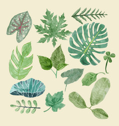 Botanical clipart set of green leaves tropical vector