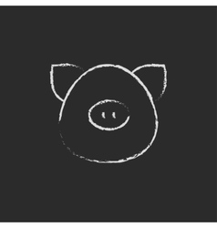 Pig head icon drawn in chalk vector