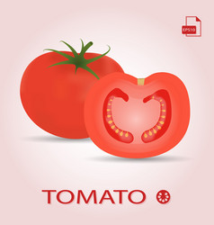 set of two fresh ripe and sliced tomatos vector image