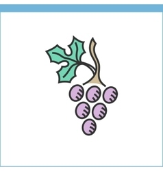 Wine grape icon vector
