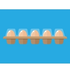 Chicken eggs in package vector image vector image
