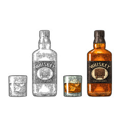 whiskey glass with ice cubes and bottle label with vector image vector image