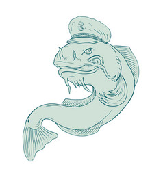 Captain catfish drawing vector