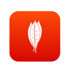 Culinary bay leaves icon digital red vector
