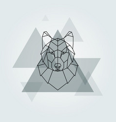 grey wolf head background vector image