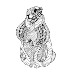 Hand drawn groundhog for adult coloring pages in vector