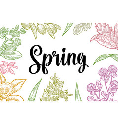 Horizontal poster with flower blooming branch vector