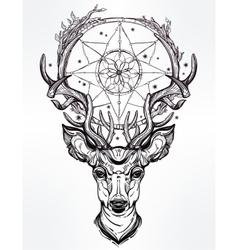 Deer head and dream catcher vector image