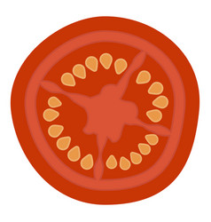 slice of fresh tomato isolated on a white vector image vector image