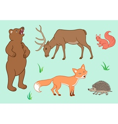 The forest animals vector image