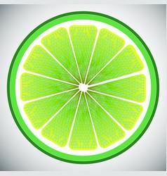 piece of lemon high quality vector image