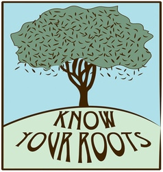 Know your roots vector