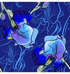 Seamless pattern of blue irises vector