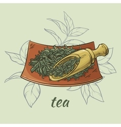 Dry tea and scoop vector