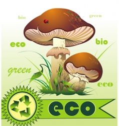 mushroom and ladybird vector image vector image