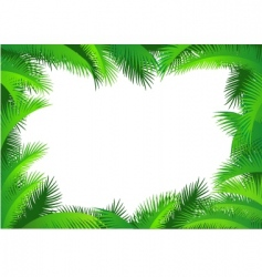 Palm leaf border vector