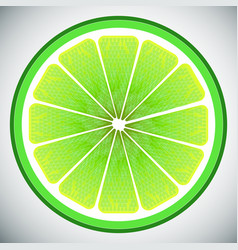 Piece of lemon high quality vector