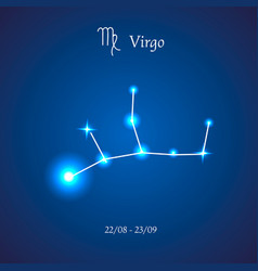 Zodiac constellation virgo the maiden vector