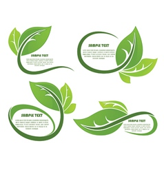 leaves frames vector image
