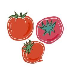 Three tomatoes vector image