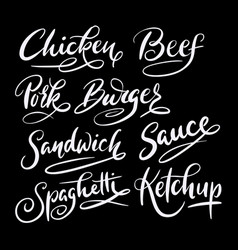 beef and burger hand written typography vector image