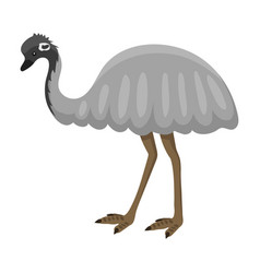 australia wild ostrich animal cartoon character vector image vector image